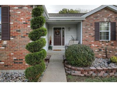 Lake St Louis MO Single Family Home For Sale: $219,900