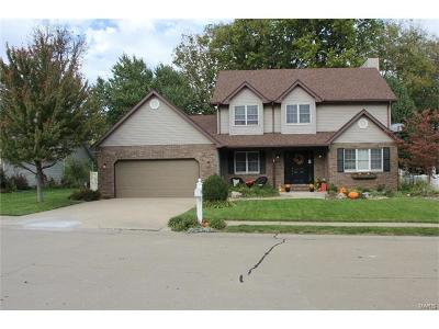 Edwardsville Single Family Home For Sale: 119 Behrens
