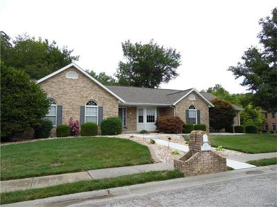 Swansea Single Family Home For Sale: 2903 Polo Court