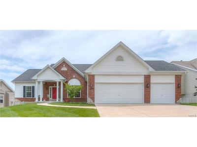 O'Fallon Single Family Home For Sale: 1519 Hunters Meadow Drive