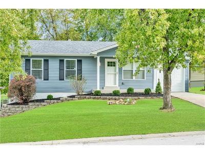 O'Fallon Single Family Home For Sale: 107 Sandy Creek