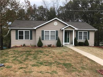 Catawissa, Robertsville Single Family Home For Sale: 4111 South Shore Drive