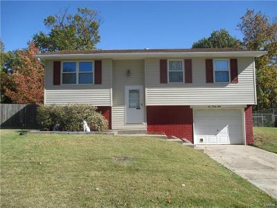 Godfrey Single Family Home For Sale: 528 Mercury Drive
