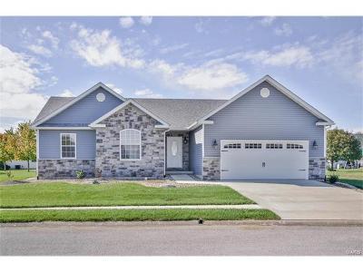 Jerseyville Single Family Home For Sale: 710 Boulder
