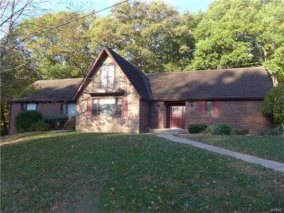 Hannibal MO Single Family Home For Sale: $155,000