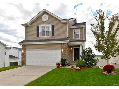 Wentzville Single Family Home For Sale: 1024 Chesterfield Drive