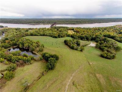 Scott County, Cape Girardeau County, Bollinger County, Perry County Farm For Sale: 1494 East Maple Street