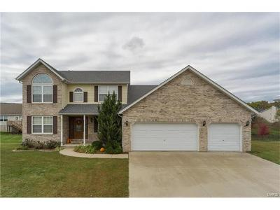 Single Family Home For Sale: 418 Larkway Drive