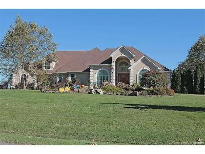 Cape Girardeau Single Family Home For Sale: 3681 County Road 318
