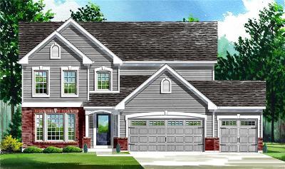O'Fallon Single Family Home For Sale: 1 Carver - Wyndgate