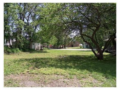 Marion County Residential Lots & Land For Sale: 1222 Center