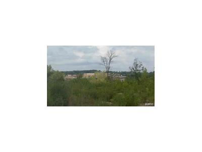 Manchester Residential Lots & Land For Sale: 377 Forest Summit Court