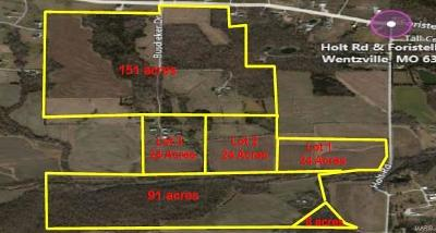 Wentzville Residential Lots & Land For Sale: Holt Road