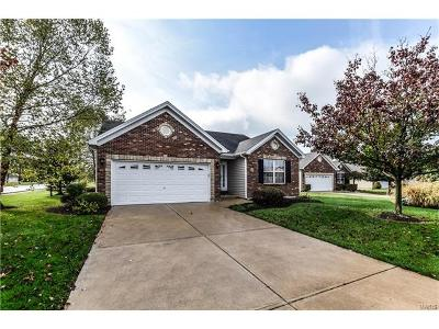Wentzville Single Family Home For Sale: 2 Villa Meadow Lane