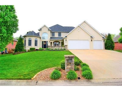 Scott County, Cape Girardeau County, Bollinger County, Perry County Single Family Home For Sale: 2517 Abbey Road