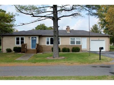 Maryville Single Family Home For Sale: 503 East Perry Street