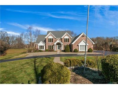 Chesterfield Single Family Home For Sale: 226 Fick Farm