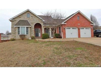 Scott County, Cape Girardeau County, Bollinger County, Perry County Single Family Home For Sale: 1507 North Farmington Road