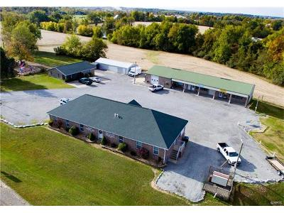 Scott County, Cape Girardeau County, Bollinger County, Perry County Commercial For Sale: 10749 State W