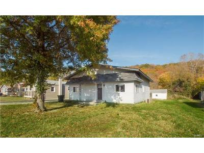 Fenton Single Family Home For Sale: 1662 South Old Highway 141