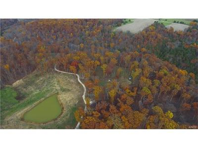 Warrenton Farm For Sale: Rock Church Rd