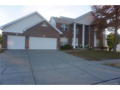 St Louis City County, St Louis County Single Family Home For Sale: 4122 Sheridan Meadows