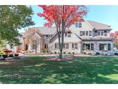 St Charles County Single Family Home For Sale: 9011 Spy Glass Hill Drive