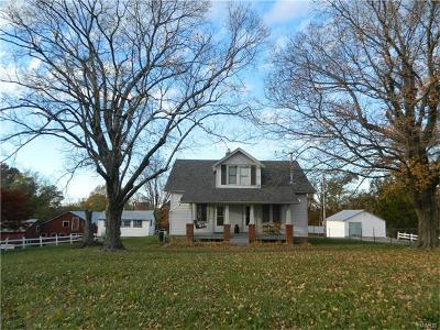 Scott County, Cape Girardeau County, Bollinger County, Perry County Single Family Home For Sale: 820 Pcr 452