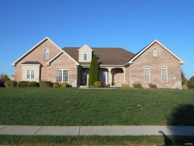 Caseyville Single Family Home For Sale: 521 Niblick Drive