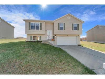Warrenton, Wright City Single Family Home For Sale: 115 Chestnut Ridge Drive