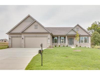 Lake St Louis Single Family Home For Sale: 204 Mason Glen Drive