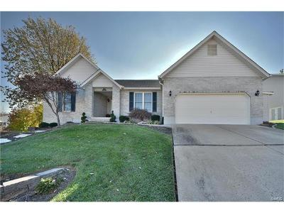 Franklin County Single Family Home For Sale: 22 Emil Court