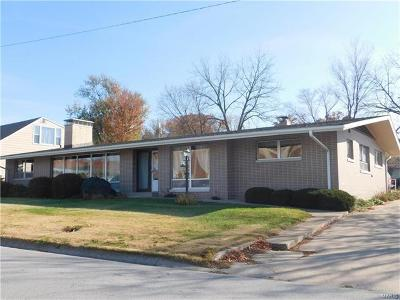 Hannibal MO Single Family Home For Sale: $169,500