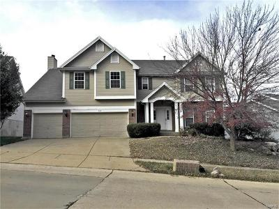 Eureka Single Family Home For Sale: 407 Meramec View