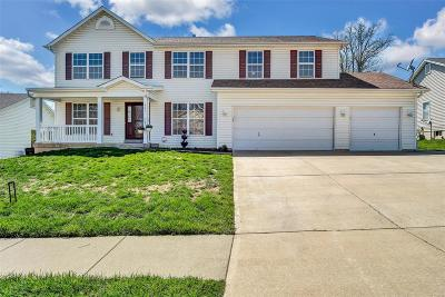 Wentzville Single Family Home For Sale: 647 Big Bend Drive