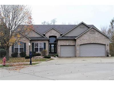 Edwardsville Single Family Home For Sale: 7028 Koufax Court