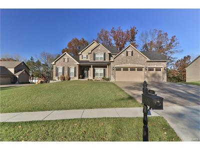 Eureka MO Single Family Home For Sale: $625,000
