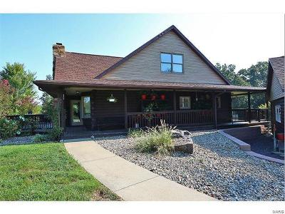 Scott County, Cape Girardeau County, Bollinger County, Perry County Single Family Home For Sale: 13150 Hwy 72