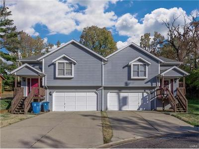 Collinsville Multi Family Home For Sale: 16 Holloway Drive