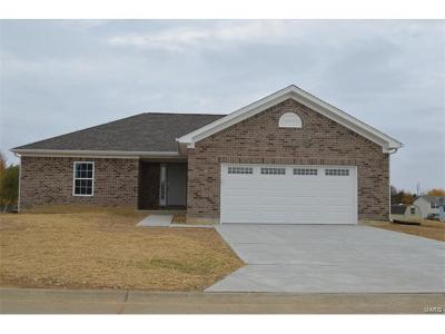 Warrenton, Wright City Single Family Home For Sale: 205 Bilbo Lane