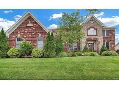 St Louis County Single Family Home For Sale: 2604 Wynncrest Ridge Drive