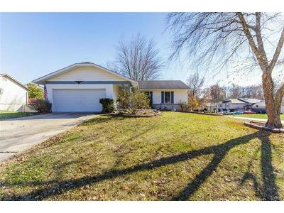 St Charles Single Family Home For Sale: 4172 Providence Drive