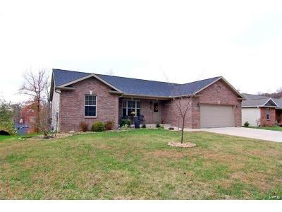 Scott County, Cape Girardeau County, Bollinger County, Perry County Single Family Home For Sale: 2672 Benton Hill