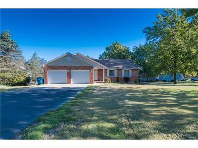 Edwardsville Single Family Home Contingent w/Kickout: 371 Point Of View Drive