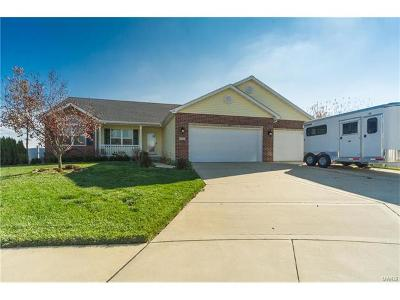 Mascoutah Single Family Home For Sale: 418 Turquoise Court