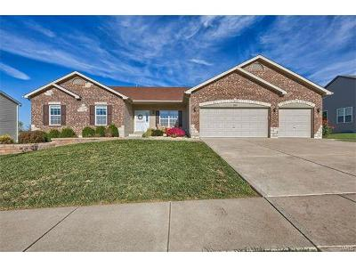 Wentzville Single Family Home For Sale: 1230 Peruque Ridge Drive