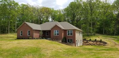 Franklin County Single Family Home For Sale: 958 Brookline Drive