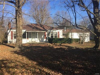 Farmington Single Family Home For Sale: 1207 East Karsch
