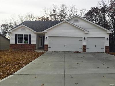 Warrenton, Wright City Single Family Home For Sale: 504 Indian Lake Drive