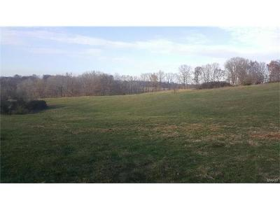 Scott County, Cape Girardeau County, Bollinger County, Perry County Farm For Sale: Highway Bb